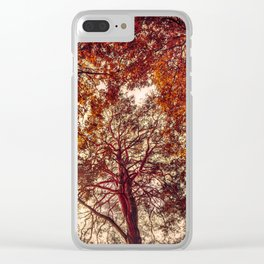 Surrounded by Autumn Clear iPhone Case