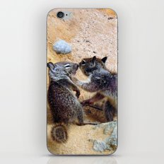Not Here, Everyone Is Watching iPhone & iPod Skin
