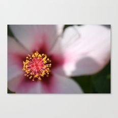 Turkish Flower Canvas Print