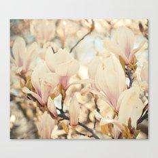 Magnolia and Cream Canvas Print