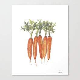 Carrots Watercolor Canvas Print