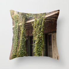Down in the Quarter Throw Pillow