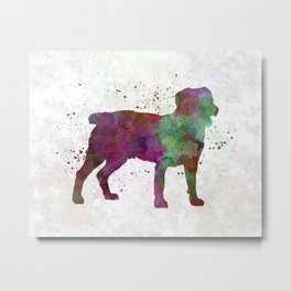 Appenzell Cattle Dog in watercolor Metal Print