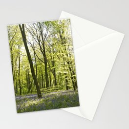 Springtime at Itchen Wood Stationery Cards