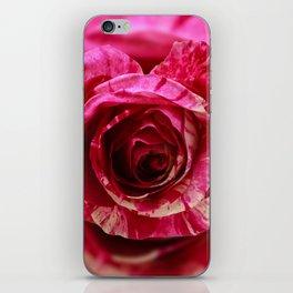 Variation on Love iPhone Skin