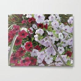 Cascade Of Petunias Metal Print