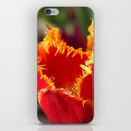 Tulip - Red with Ruffles iPhone Skin