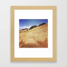 Hillside, Marin County, CA Framed Art Print