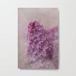 senteur de lilas Metal Print