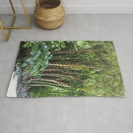 Palm Grove Rug