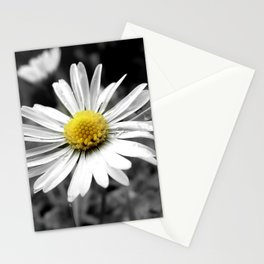 Black and white daisy Stationery Cards