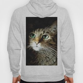 Tabby Cat With Green Eyes Isolated On Black Hoody