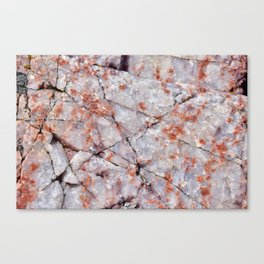 Quartz in granite Canvas Print