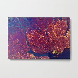 Arboreal Vessels - Pulmonary Metal Print