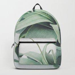 Air Plant III Backpack
