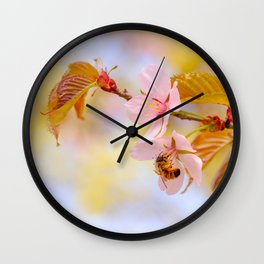 Honey bee on a sakura flower Wall Clock