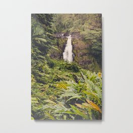 Jungle Waterfall III Metal Print