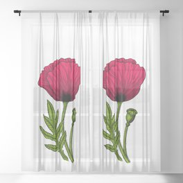 Red poppy drawing 4 Sheer Curtain