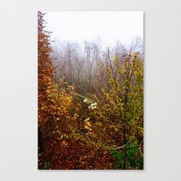 End of November  Canvas Print