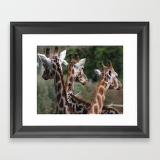 Lovely Ladies Framed Art Print