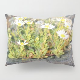 Friday Flowers Pillow Sham