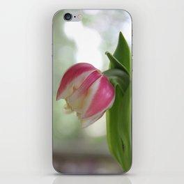 Tired Tulip  iPhone Skin