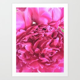 "Peony ""Peter Brand"" Art Print"