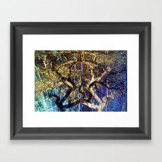 The mysterious face of nature Framed Art Print