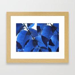 Close Up Leaves II Framed Art Print