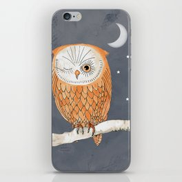 Winking Owl by the Light of the Moon iPhone Skin