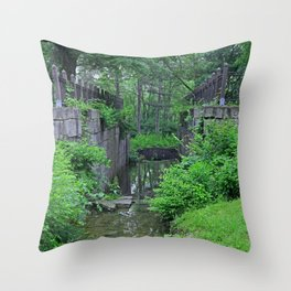 Rites of Spring Throw Pillow