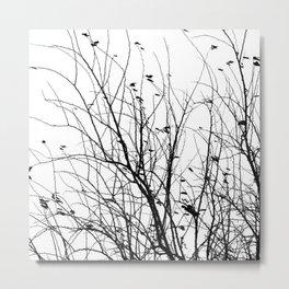 Black white tree branch bird nature pattern Metal Print