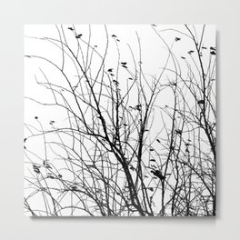 Black white tree branch bird nature pattern Metal Print
