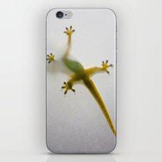 Gekko iPhone & iPod Skin