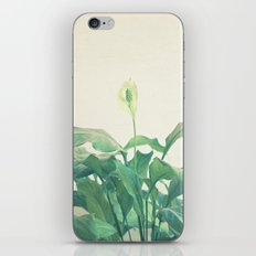 Peace Lily iPhone & iPod Skin