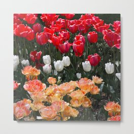 The garden of spring Metal Print