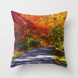 Paved Autumn Path Throw Pillow
