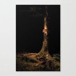 lamp test Canvas Print