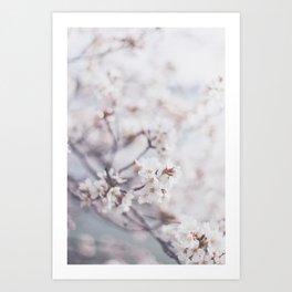 . flower day dream . Art Print