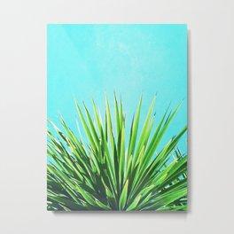Solar Yucca Palm Metal Print