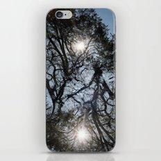 Arterial California TREES iPhone & iPod Skin