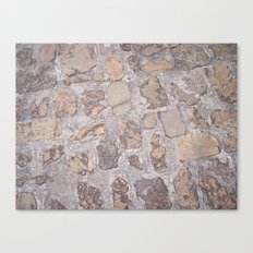 Ground Canvas Print