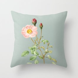 Vintage Sparkling Rose Botanical Illustration on Mint Green Throw Pillow