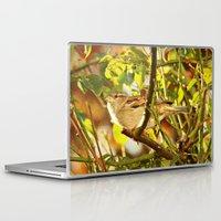 sparrow Laptop & iPad Skins featuring Sparrow by Judy Palkimas