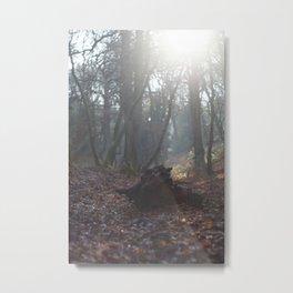 Stumped Metal Print