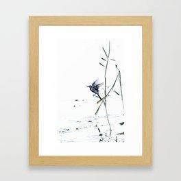 Little Bird (Wagtail - Eurasian Songbird) by The Reeds #decor #society6 #buyart Framed Art Print