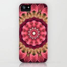 Maroon Fractal iPhone Case