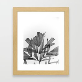 black and white tropics Framed Art Print