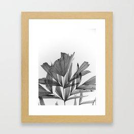 black and white tropics Framed Art Print