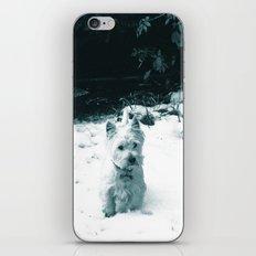 This is Snow Fun... iPhone & iPod Skin